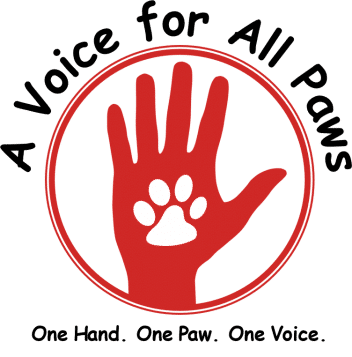 A Voice for All Paws